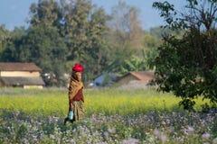 Taru woman walking in Terai's field in Nepal Royalty Free Stock Photography