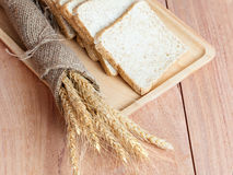 Tarwe, brood in het dienblad Stock Afbeeldingen