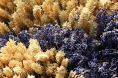Tarwe en lavendel vanaf bovenkant Stock Fotografie