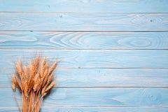 Tarwe op blauwe houten achtergrond Rustieke stijl Stock Afbeeldingen