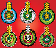 Tarwe organische biolandbouwproduct ontwerpzegels Royalty-vrije Stock Afbeeldingen