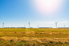 Tarwegebied en ecomacht, windturbines Royalty-vrije Stock Foto's