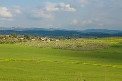 Tarwegebied en plattelandslandschap. Royalty-vrije Stock Foto's