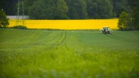 Tarwegebied en tractor het ploegen stock video