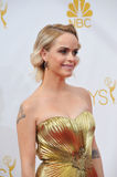 Taryn Manning Royalty Free Stock Images