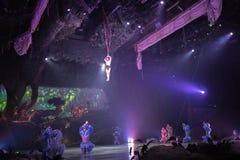 Tarzan: Appell av djungelshowen på Shanghai Disneyland arkivbild