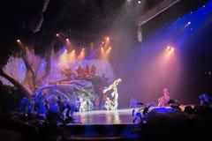 Tarzan: Appell av djungelshowen på Shanghai Disneyland royaltyfri foto