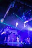 Tarzan: Appell av djungelshowen på Shanghai Disneyland royaltyfri bild