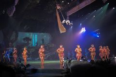 Tarzan: Appell av djungelshowen på Shanghai Disneyland arkivbilder