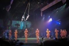 Tarzan: Appell av djungelshowen på Shanghai Disneyland arkivfoton