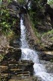 Tarzan Falls Stock Images