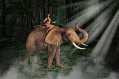 Tarzan Jungle Girl Elephant Illustration Royalty Free Stock Photo