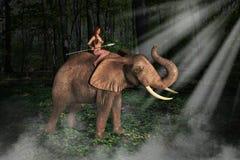 Tarzan Jungle Girl Elephant Illustration Royalty Free Stock Photo