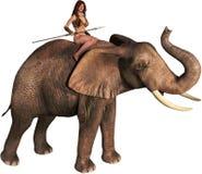 Tarzan Jungle Girl Elephant, Isolated Illustration. A Tarzan or Amazon like jungle girl is riding an elephant. Illustration is isolated on white Stock Photos