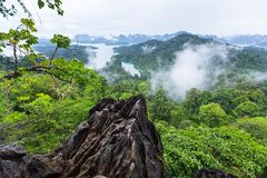 Tarzan View Point Royalty Free Stock Image