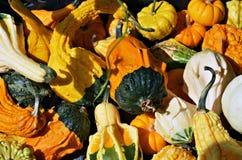Tas d'automne découpant des potirons à vendre au marché local d'agriculteurs Photographie stock