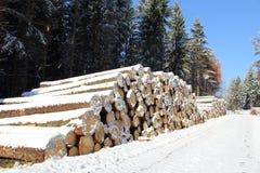 Tas de bois dans la forêt d'hiver avec la neige Photo stock