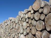 Tas de bois des rondins ronds contre le ciel bleu Pile de bois de chauffage empilée Troncs en bois coupés image stock
