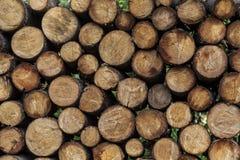 Tas de bois prêt pour l'hiver Images stock