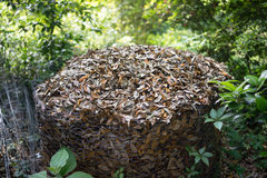 Tas de compost dans la clôture de fil de poulet Image stock