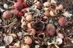 Tas de compost des chutes de décomposition de fruits et légumes de cuisine Images stock
