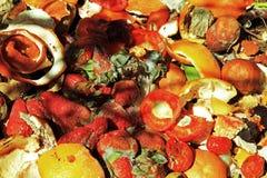 Tas de déchets avec des déchets de cuisine Photo libre de droits