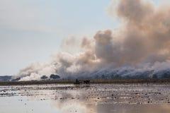 Tas de déchets brûlant de fumée Photographie stock