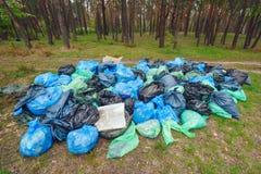 Tas de déchets dans une forêt photo libre de droits