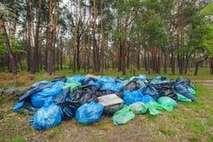 Tas de déchets dans une forêt photos libres de droits