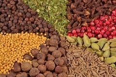 Tas de divers genres d'épices Photo libre de droits