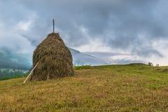 Tas de foin dans Borsa, Maramures, Roumanie Photo libre de droits