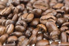 Tas de grains de café Photos libres de droits
