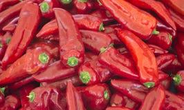 Tas de grands poivrons rouges mûrs à un marché en plein air Un grand nombre de poivrons rouges dans une pile Une variété spéciale Images stock