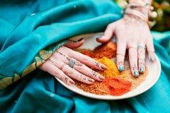 Tas des épices indiennes sèches d'un plat Photographie stock libre de droits