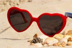 Tas des coquilles et des lunettes de soleil sur le sable à la plage Image libre de droits