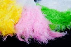 Tas des fans se pliantes colorées faites de plumes d'oiseau sur le fond noir Images stock