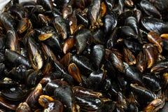 tas des moules fraîches crues sur le compteur à la poissonnerie locale Tas de mollusque nutritif de mollusques et crustacés au ma photo stock