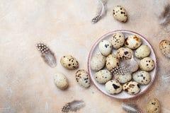 Tas des oeufs de caille décorés de la plume Aliment biologique Type rustique Vue supérieure Photos libres de droits