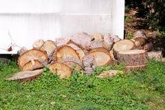 Tas des rondins en bois prêts pour l'hiver Coupez les troncs d'arbre sur l'herbe Pile avec du bois d'incendie Une pile des bois d images libres de droits