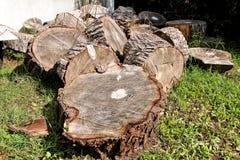 Tas des rondins en bois prêts pour l'hiver Coupez les troncs d'arbre sur l'herbe Pile avec du bois d'incendie Une pile des bois d images stock