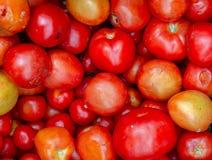 Tas des tomates mûres sur un marché photos stock