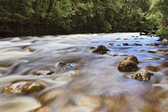 Tas Franklin river Royalty Free Stock Photography