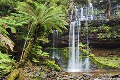 Tas Mt Field Cascade Front Stock Photo
