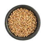 Tas sec cru de grains de grain de blé dans la cuvette noire de fer Image stock