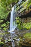 Tas WF cascade vertical Stock Photography