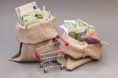 Tasche mit zwei Geldern mit Euro und Warenkorb lizenzfreies stockfoto