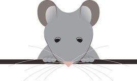 Taschen-Maus Lizenzfreies Stockfoto
