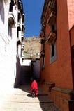Tashilhunpo monastery Lama's back Stock Images