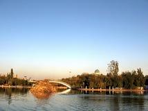 Tashkent Almazar pond 2007 Stock Image