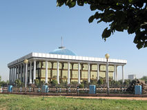 Tashkent le Majlis 2007 Image libre de droits